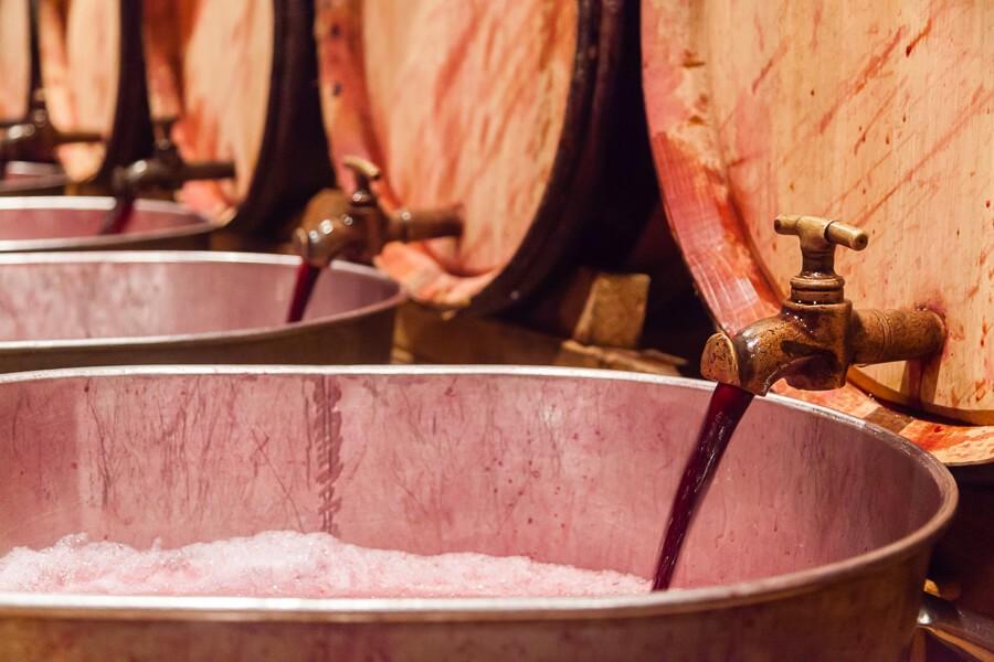 Elevage vins Côtes-du-Rhône