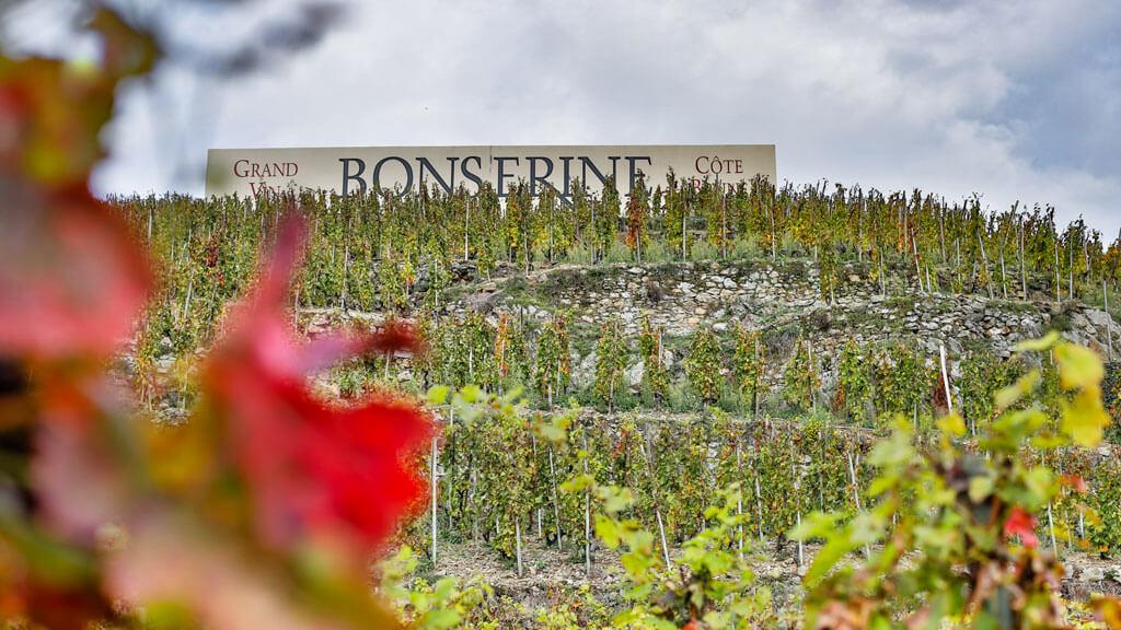 Coteaux Domaine de Bonserine